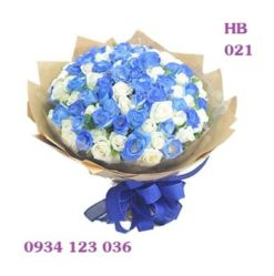 hoa-bo-17