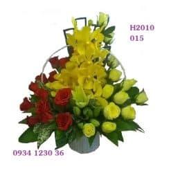 hoa-20-10-12