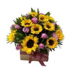 sun-flowers-2